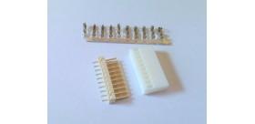 White Housing 10 Pin