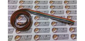 Kabel pelangi 10 Pin