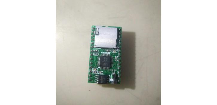 WT5001M02-28P Mp3 Sound Module (IC Bukan WT5001)