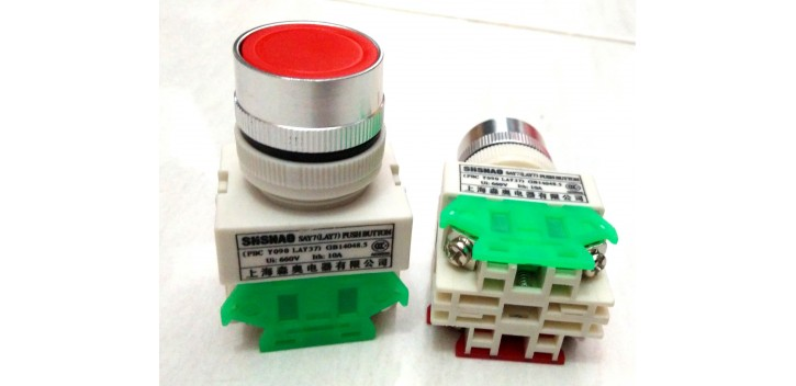 SAY 7-11BN LAY 7-11BN 22MM Reset Push Button-Red