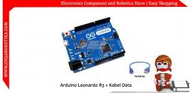 Arduino Leonardo Compatible