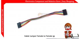 Kabel Jumper Female to Female 9p 20cm